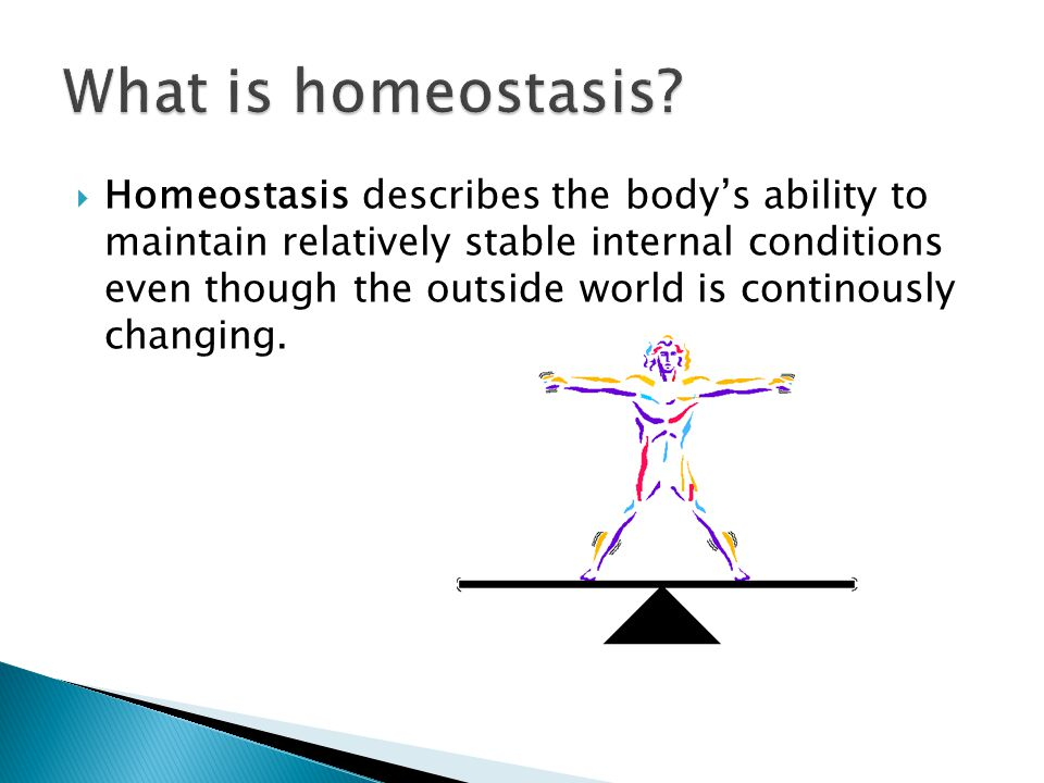 Homeostasis describes the bodys ability to maintain relatively stable internal conditions even though the outside world is continously changing.