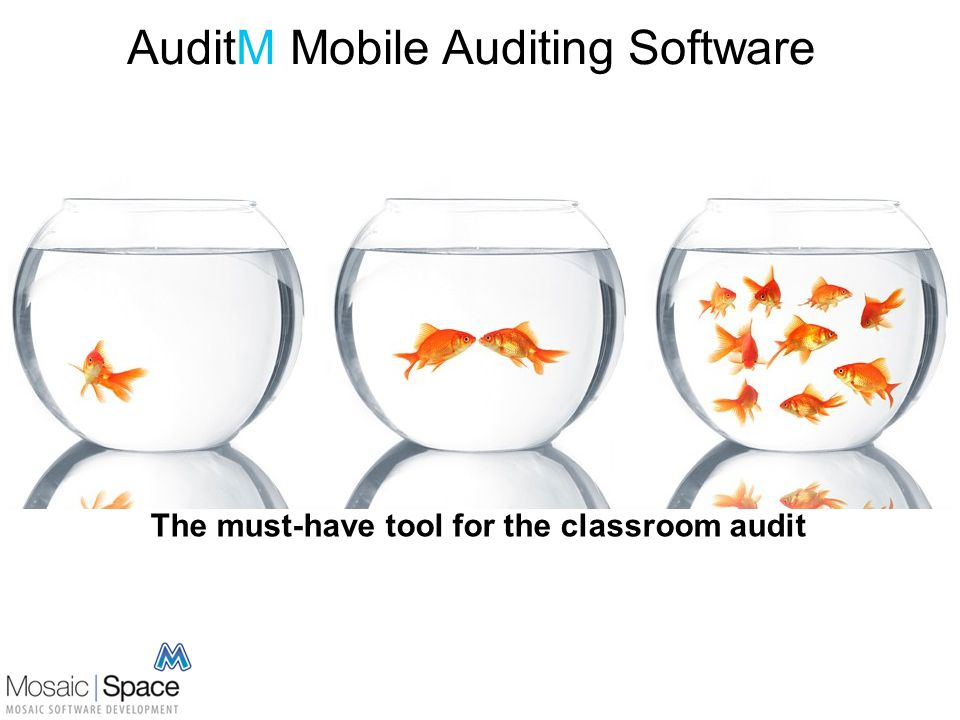 AuditM Mobile Auditing Software The must-have tool for the classroom audit