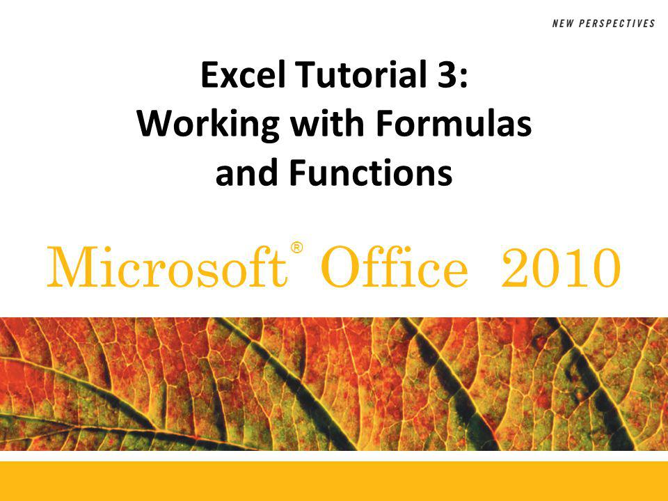 ® Microsoft Office 2010 Excel Tutorial 3: Working with Formulas and Functions