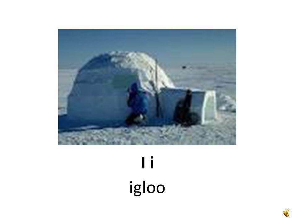I i icecubes