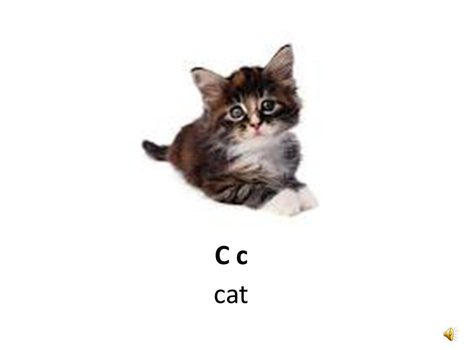 C c circle