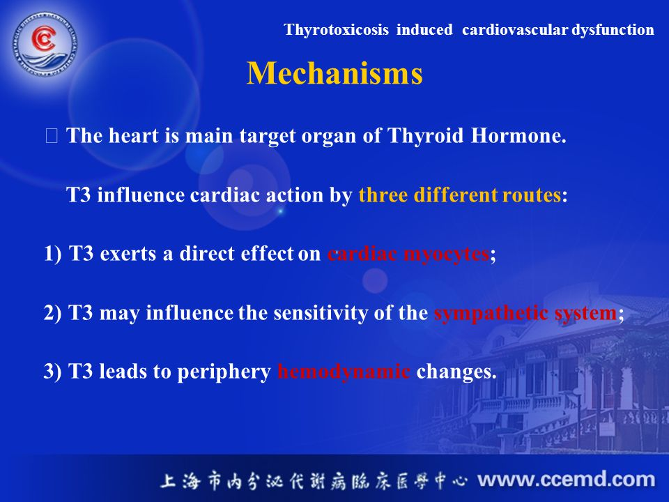 Mechanisms The heart is main target organ of Thyroid Hormone. T3 influence cardiac action by three different routes: 1)T3 exerts a direct effect on ca