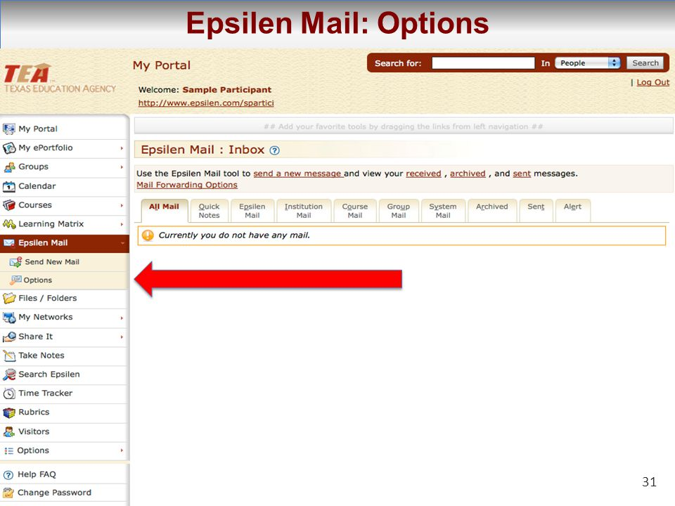 31 Epsilen Mail: Options 31