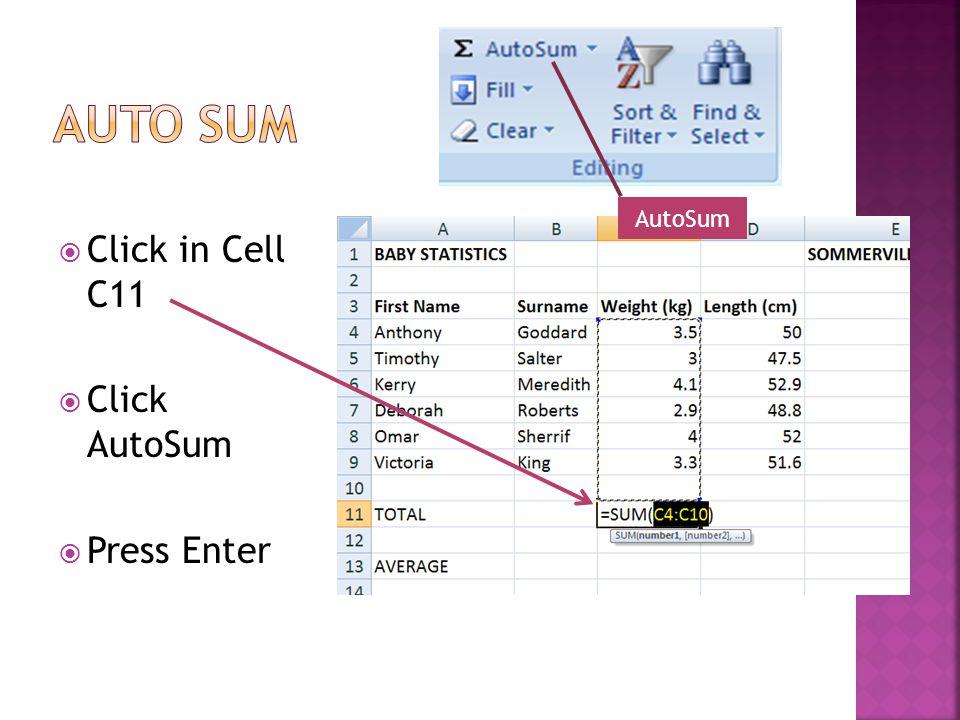 Click in Cell C11 Click AutoSum Press Enter AutoSum