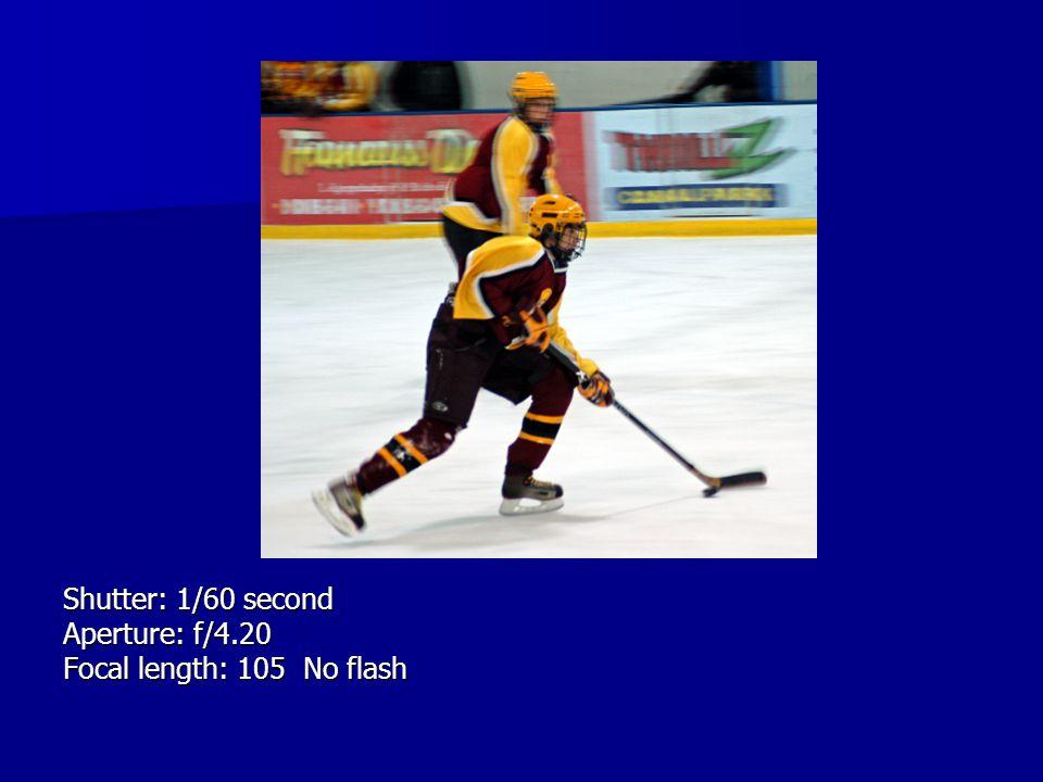 Shutter: 1/60 second Aperture: f/4.20 Focal length: 105 No flash