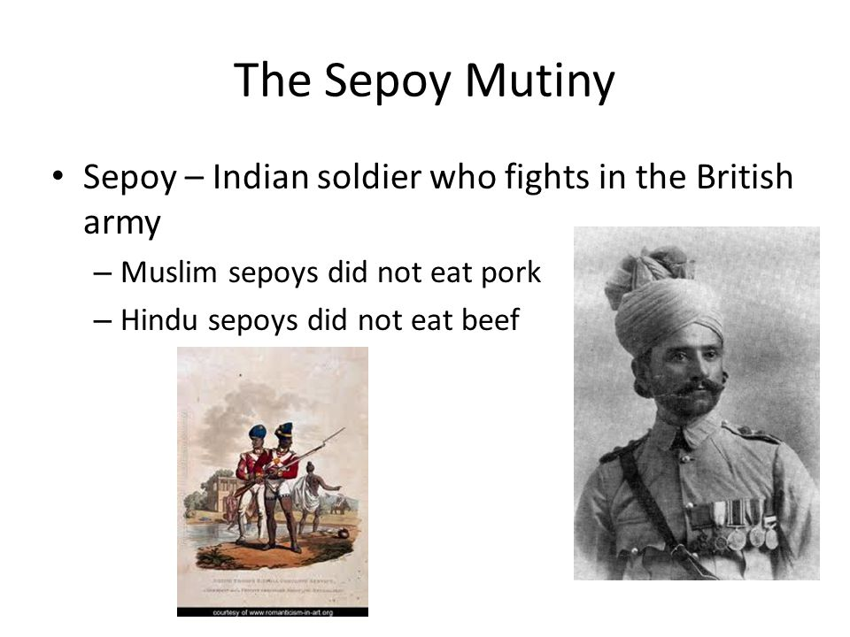 The Sepoy Mutiny Sepoy – Indian soldier who fights in the British army – Muslim sepoys did not eat pork – Hindu sepoys did not eat beef