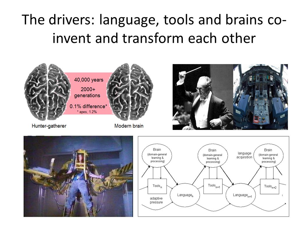 The drivers: language, tools and brains co- invent and transform each other