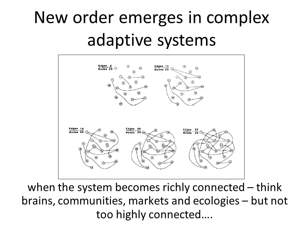New order emerges in complex adaptive systems when the system becomes richly connected – think brains, communities, markets and ecologies – but not too highly connected….