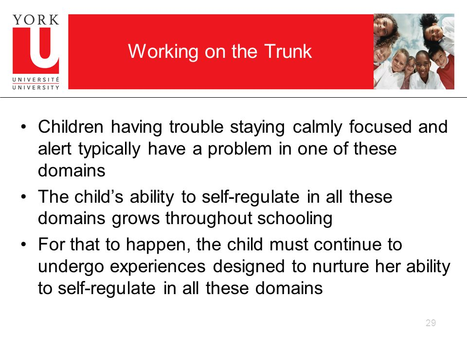 Working on the Trunk Children having trouble staying calmly focused and alert typically have a problem in one of these domains The childs ability to self-regulate in all these domains grows throughout schooling For that to happen, the child must continue to undergo experiences designed to nurture her ability to self-regulate in all these domains 29