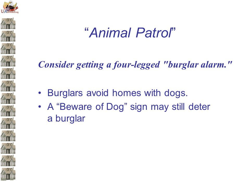 Animal Patrol Consider getting a four-legged burglar alarm. Burglars avoid homes with dogs.