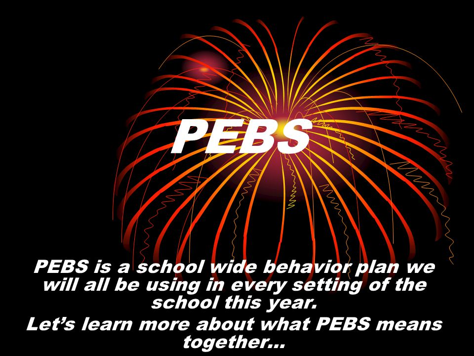 PEBS is a school wide behavior plan we will all be using in every setting of the school this year.