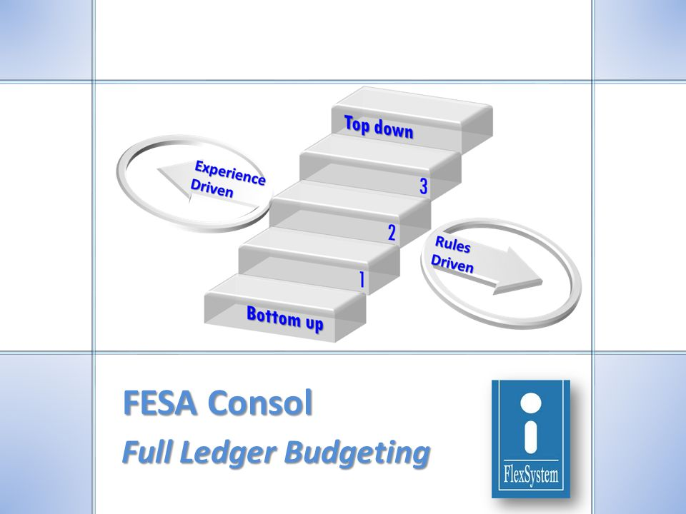 FESA Consol Full Ledger Budgeting