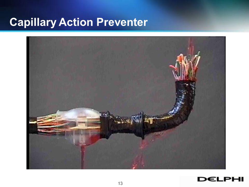 13 Capillary Action Preventer