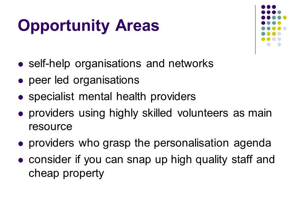 Opportunity Areas self-help organisations and networks peer led organisations specialist mental health providers providers using highly skilled volunteers as main resource providers who grasp the personalisation agenda consider if you can snap up high quality staff and cheap property