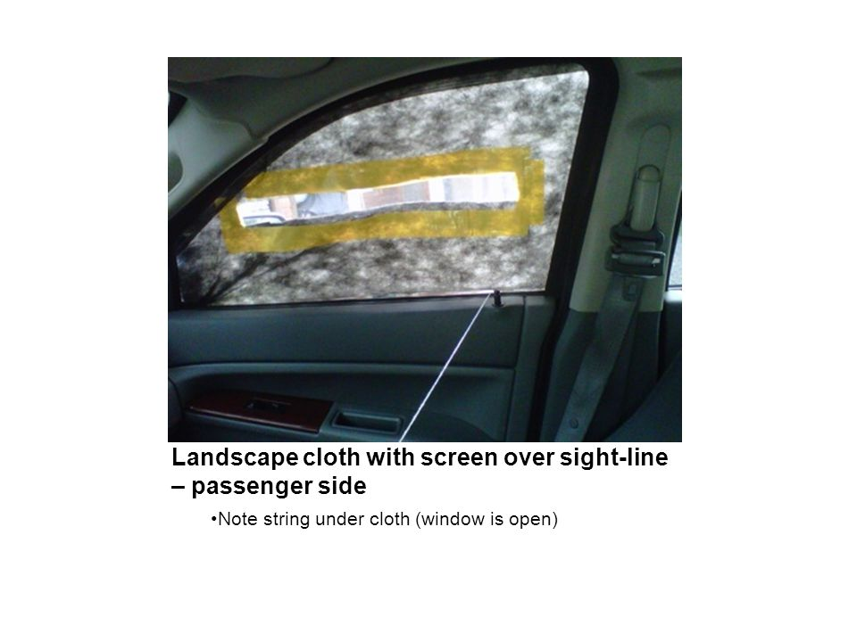 Landscape cloth with screen over sight-line – passenger side Note string under cloth (window is open)