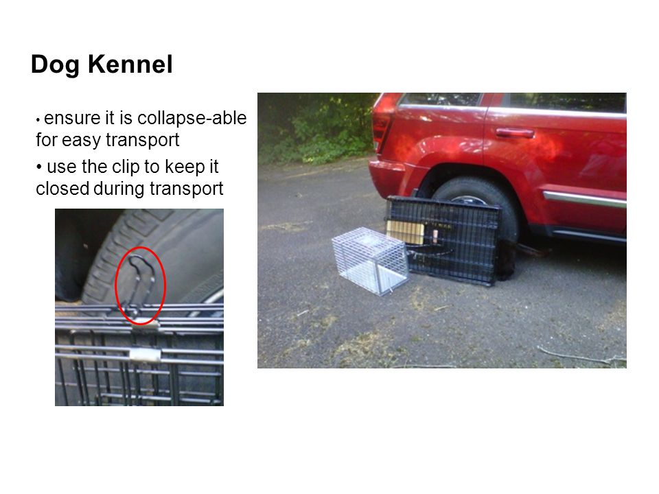 Dog Kennel ensure it is collapse-able for easy transport use the clip to keep it closed during transport