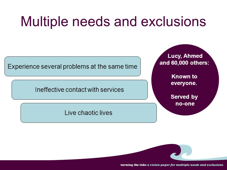 Experience several problems at the same time Multiple needs and exclusions Ineffective contact with services Live chaotic lives Lucy, Ahmed and 60,000