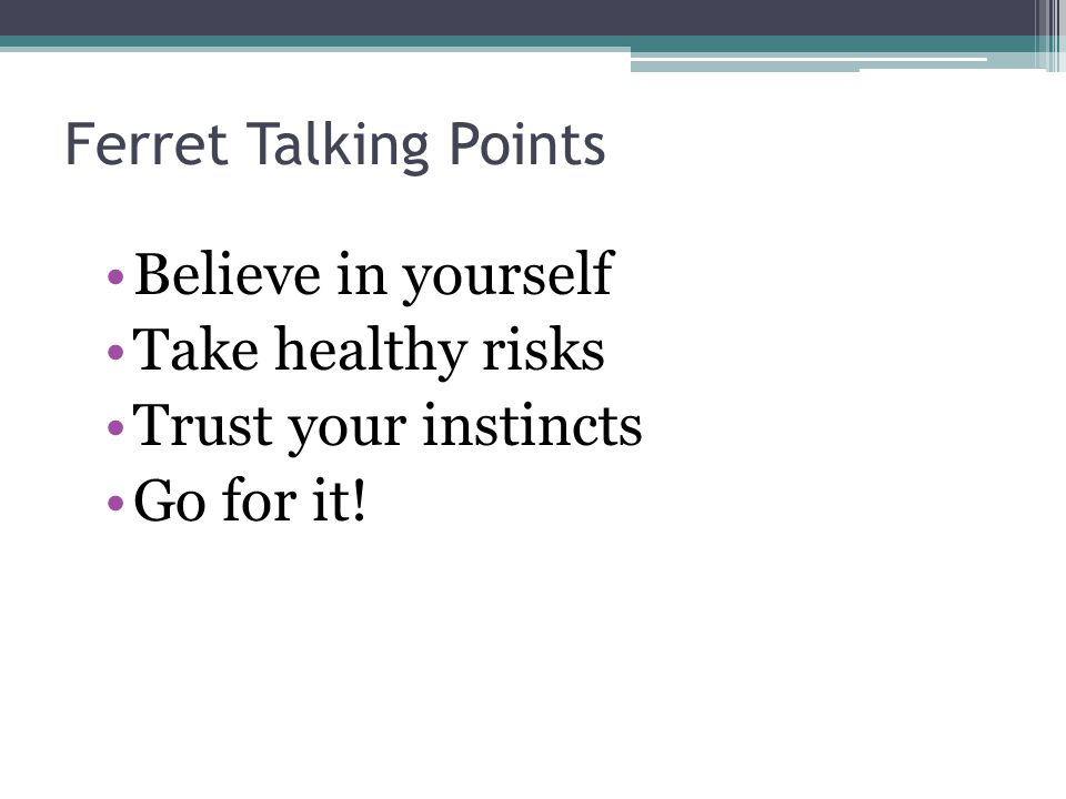 Ferret Talking Points Believe in yourself Take healthy risks Trust your instincts Go for it!