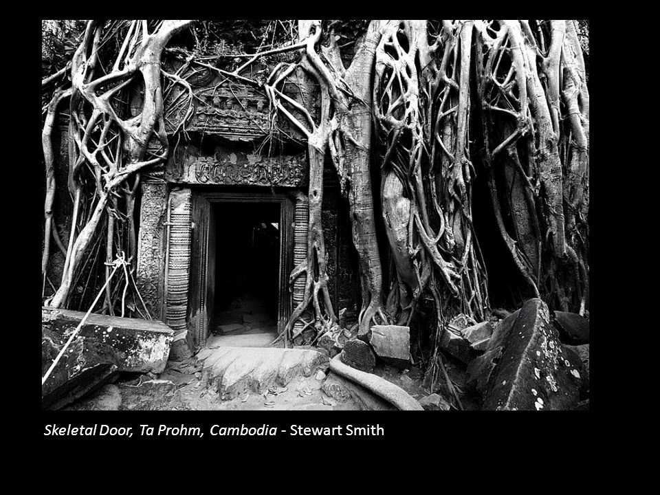 Skeletal Door, Ta Prohm, Cambodia - Stewart Smith