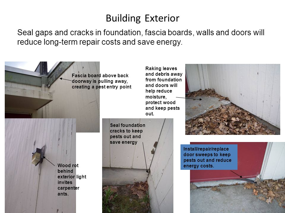 Building Exterior Seal gaps and cracks in foundation, fascia boards, walls and doors will reduce long-term repair costs and save energy.