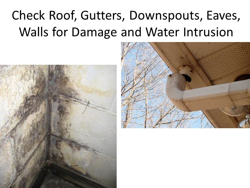 Check Roof, Gutters, Downspouts, Eaves, Walls for Damage and Water Intrusion