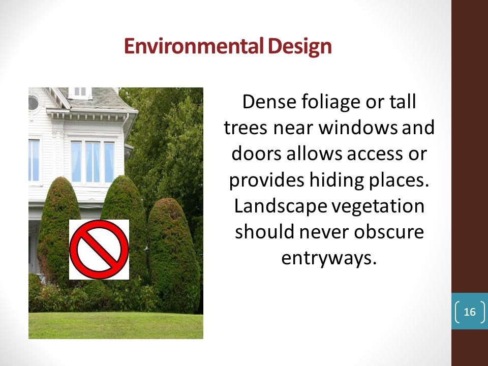 Environmental Design Dense foliage or tall trees near windows and doors allows access or provides hiding places.