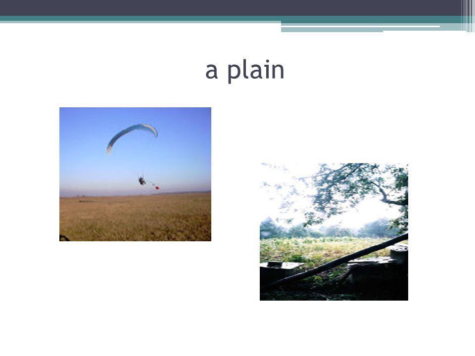 a plain