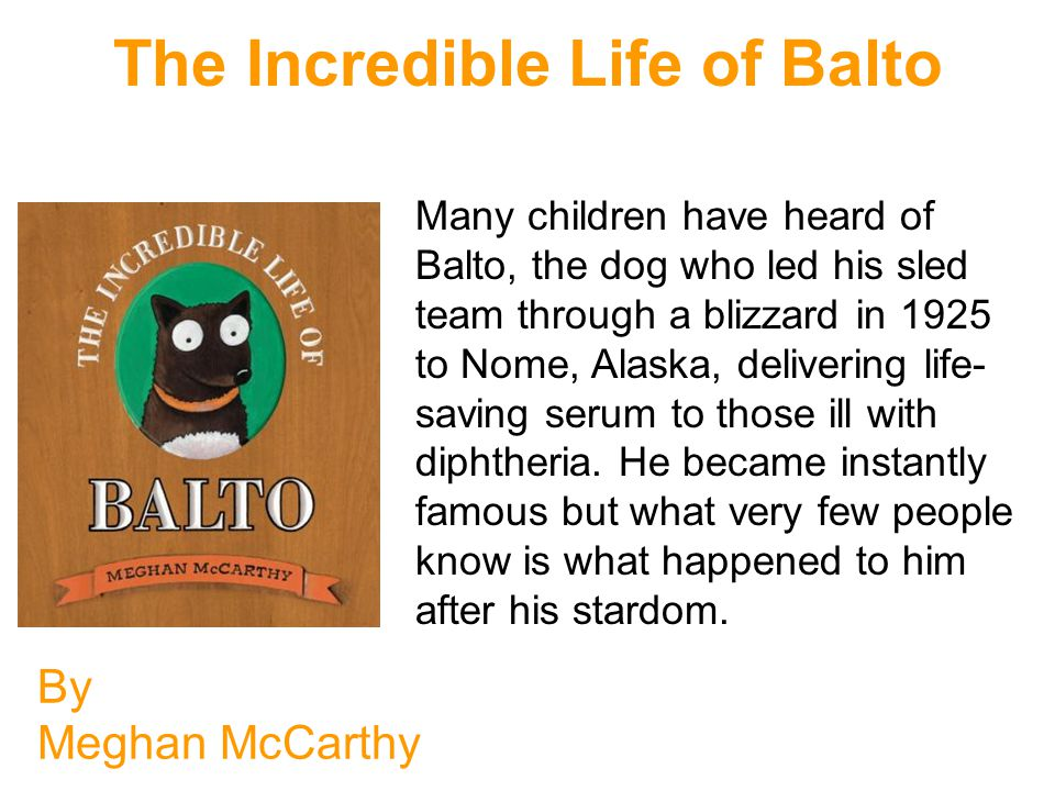 The Incredible Life of Balto By Meghan McCarthy Many children have heard of Balto, the dog who led his sled team through a blizzard in 1925 to Nome, Alaska, delivering life- saving serum to those ill with diphtheria.