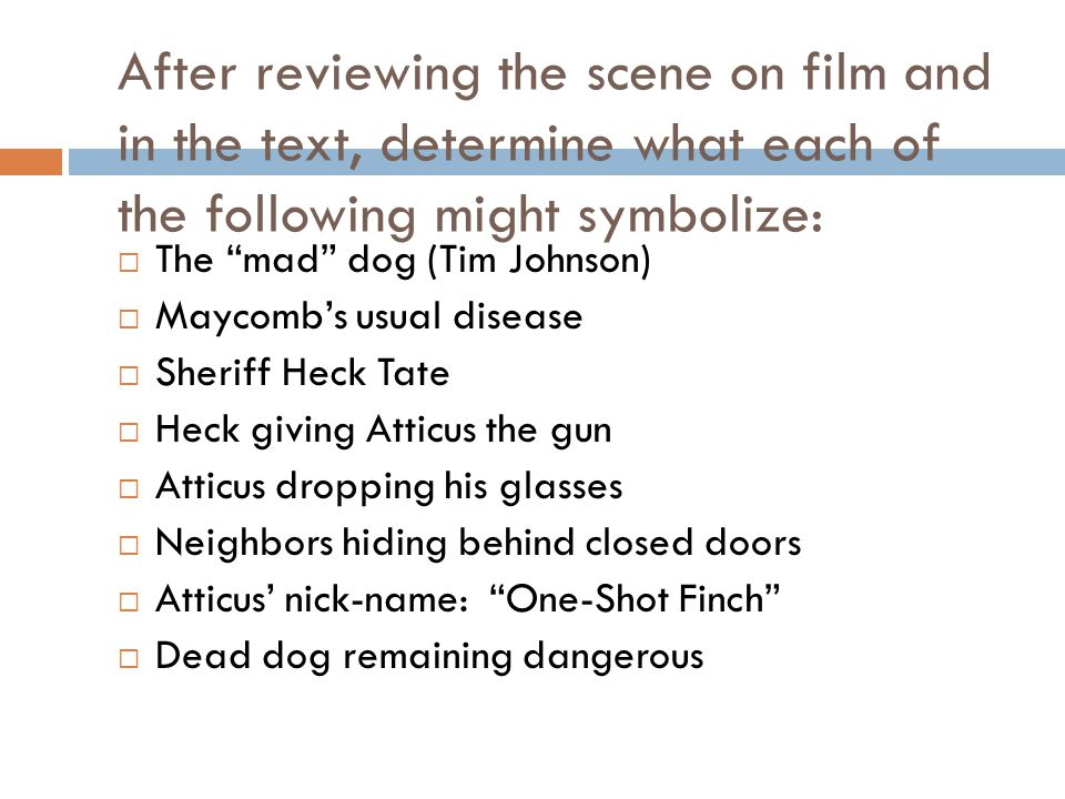 After reviewing the scene on film and in the text, determine what each of the following might symbolize: The mad dog (Tim Johnson) Maycombs usual dise