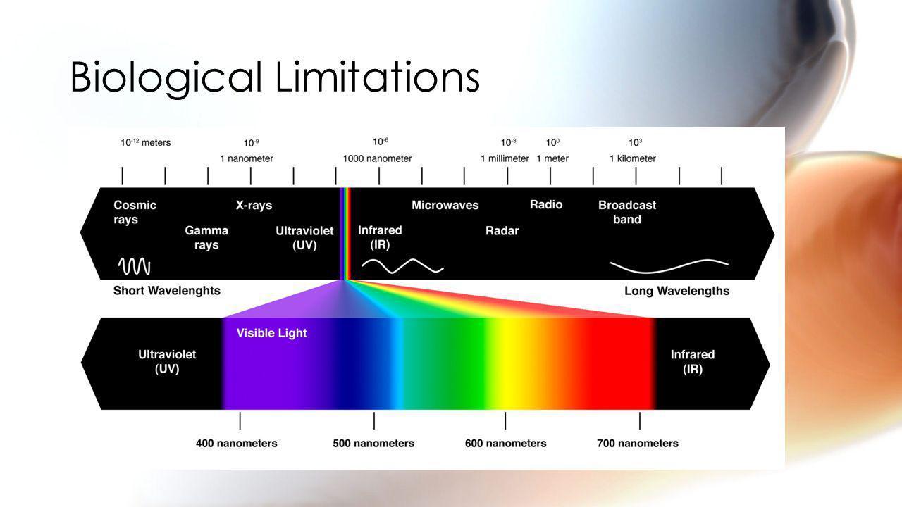 Biological Limitations