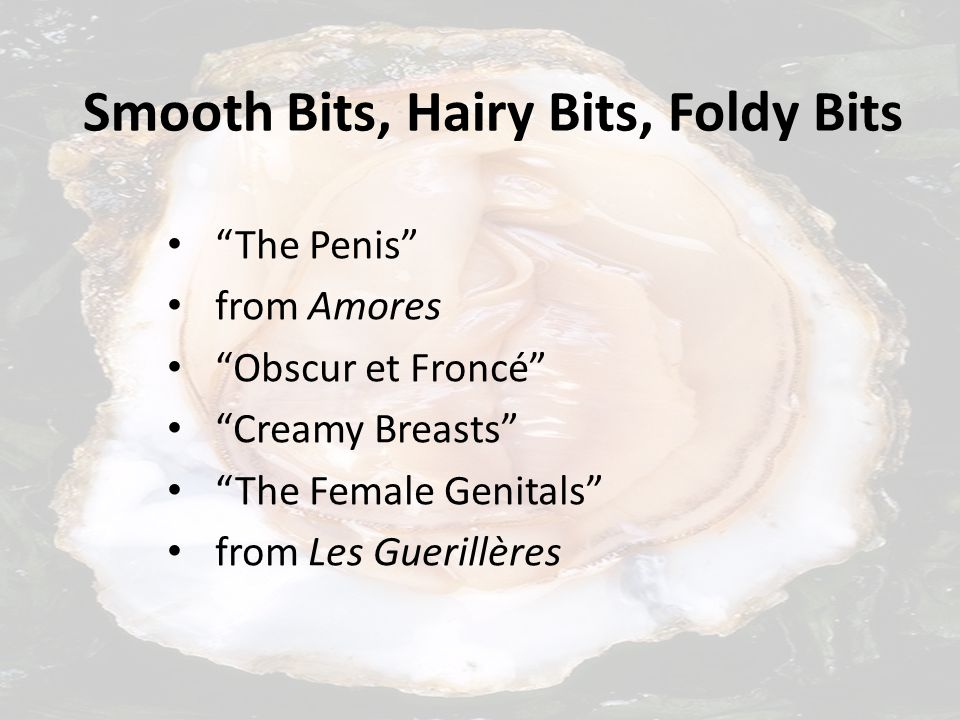 Smooth Bits, Hairy Bits, Foldy Bits The Penis from Amores Obscur et Froncé Creamy Breasts The Female Genitals from Les Guerillères