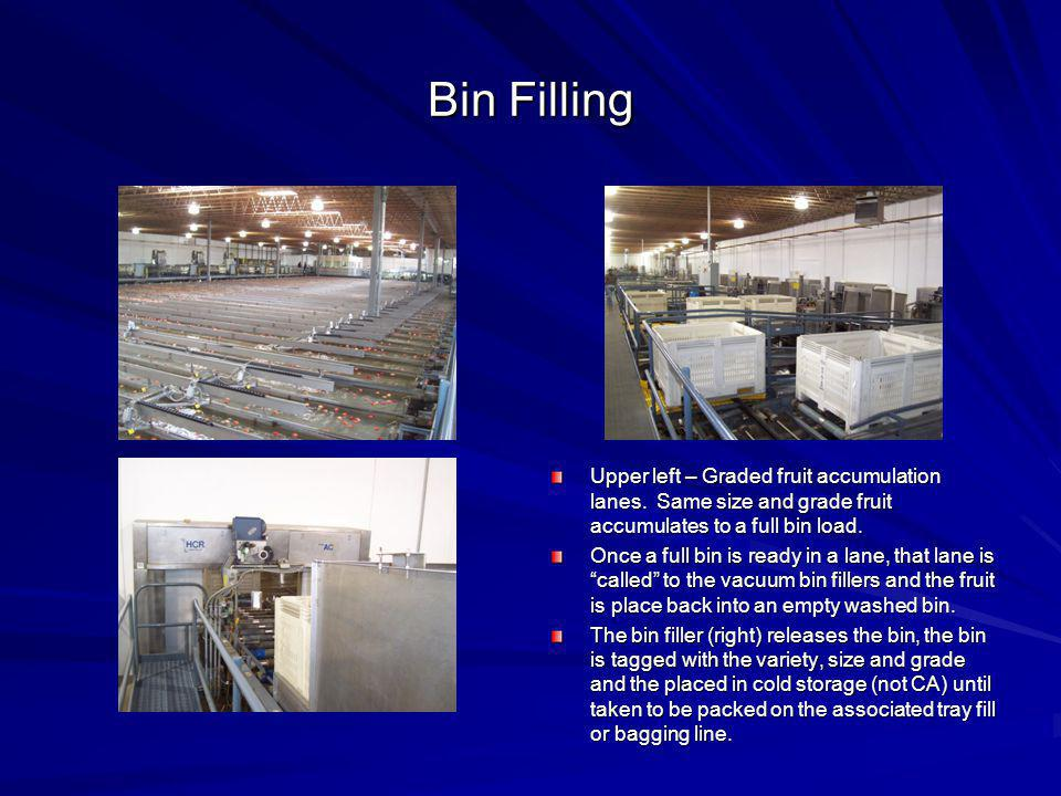 Bin Filling Upper left – Graded fruit accumulation lanes. Same size and grade fruit accumulates to a full bin load. Once a full bin is ready in a lane