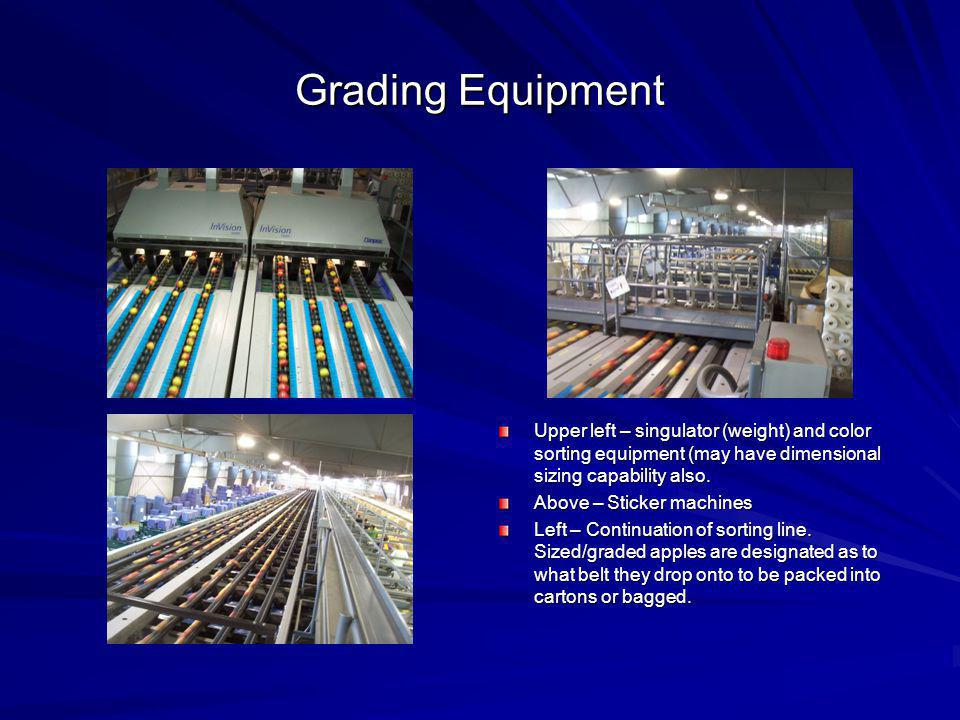 Grading Equipment Upper left – singulator (weight) and color sorting equipment (may have dimensional sizing capability also. Above – Sticker machines