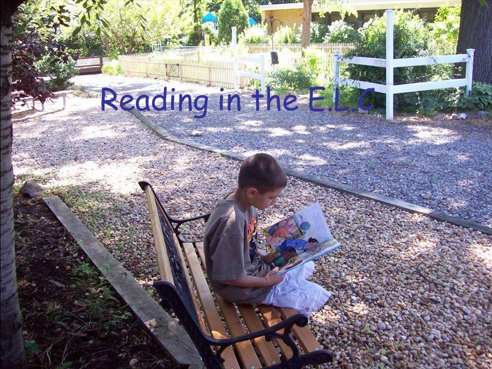 Reading in the E.L.C.