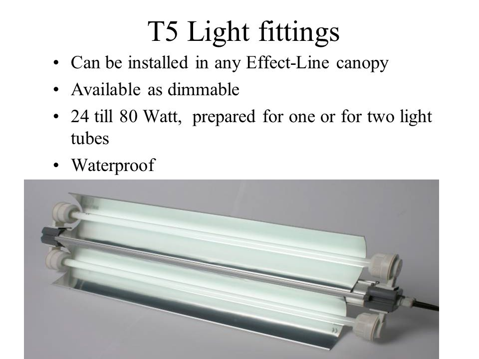 New T5 - 75% more light ! Perfect for aquariums where a great deal of light is needed: Marine Aquariums Plant aquariums Cichlid aquariums Available fo
