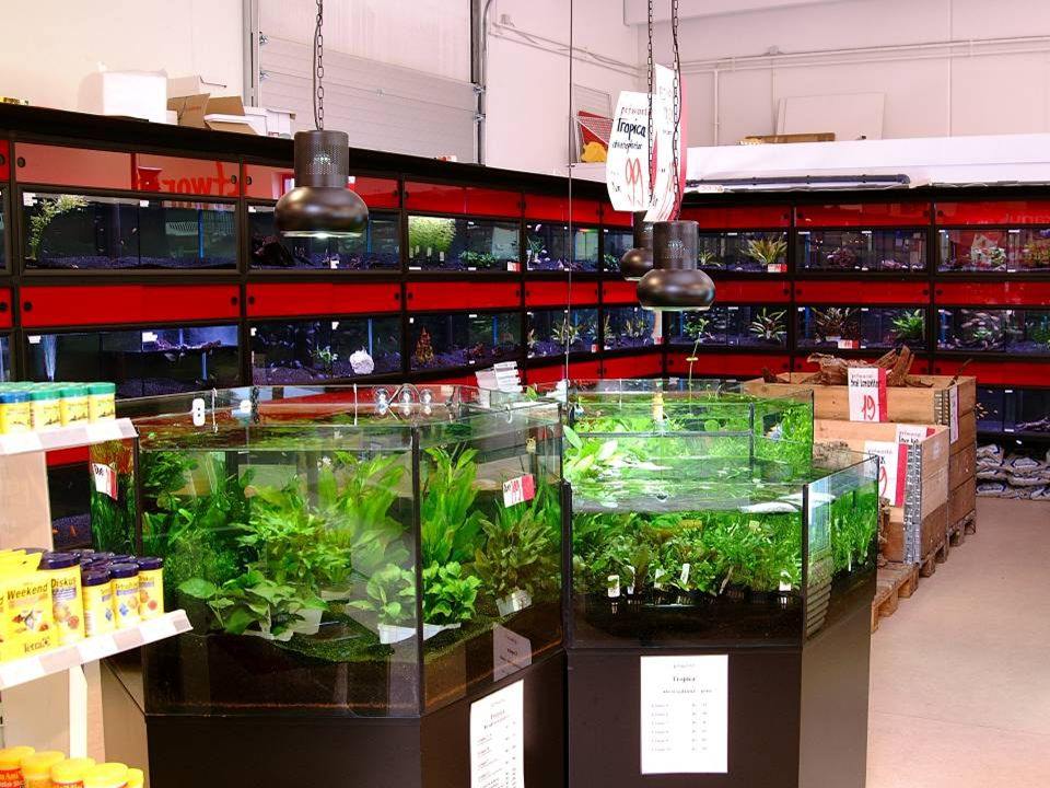 Aquarium racks Made to fit your shop Long life time Filters and plumbing can be made to fit your needs