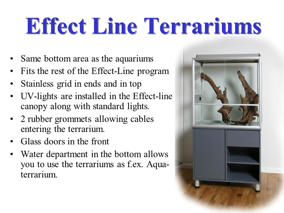Terrariums 63 l. 60 x 30 x 35 cm. 126 l. 60 x 30 x 70 cm. 128 l. 80 x 40 x 40 cm. 250 l. 100 x 50 x 50 cm. 256 l. 80 x 40 x 80 cm. 500 l. 100 x 50x 10