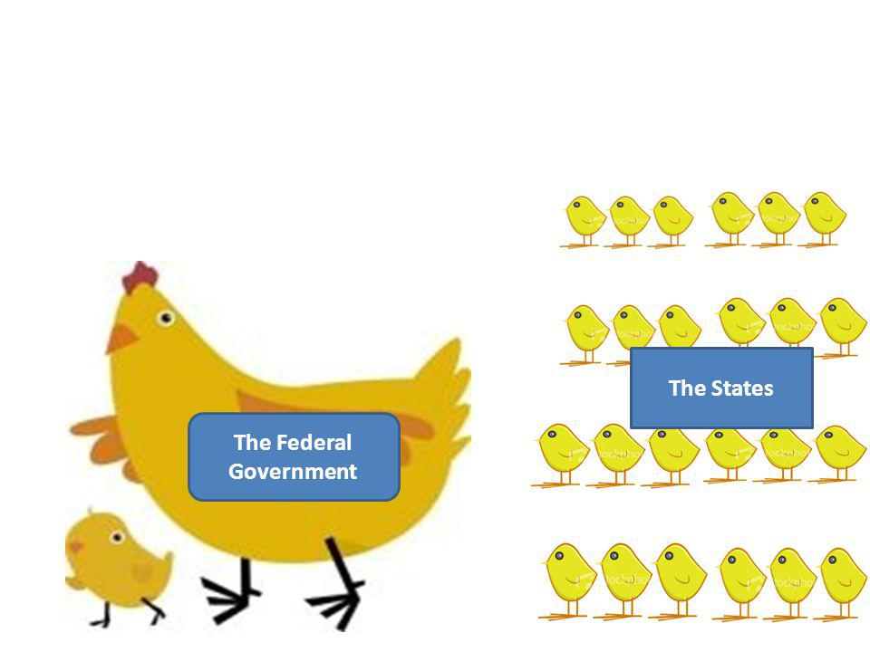 The Federal Government The States