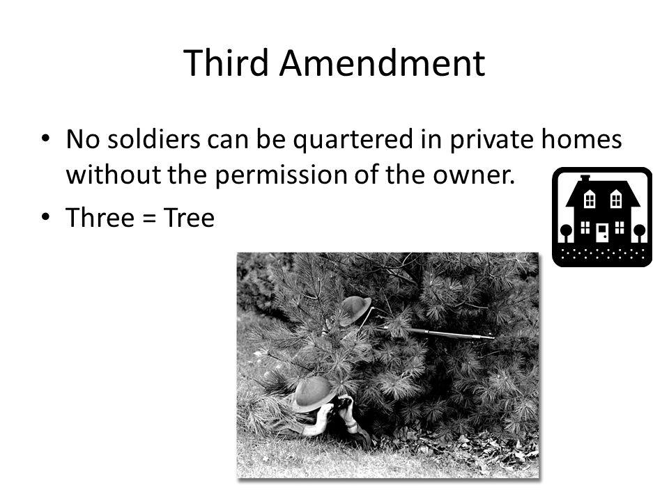 Third Amendment No soldiers can be quartered in private homes without the permission of the owner. Three = Tree