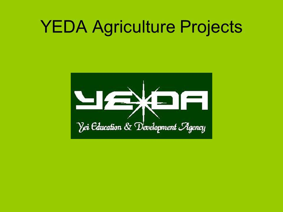 YEDA Agriculture Projects