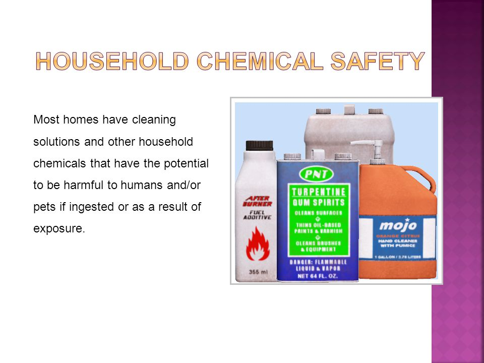Most homes have cleaning solutions and other household chemicals that have the potential to be harmful to humans and/or pets if ingested or as a result of exposure.
