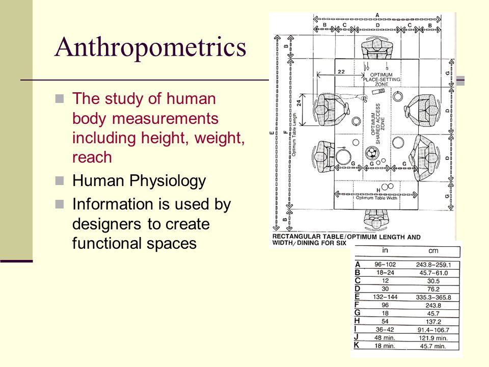 Anthropometrics The study of human body measurements including height, weight, reach Human Physiology Information is used by designers to create functional spaces