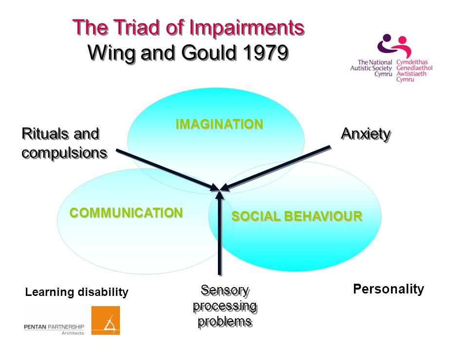 The Triad of Impairments Wing and Gould 1979 SOCIAL BEHAVIOUR Sensory processing problems Anxiety Rituals and compulsions Rituals and compulsions COMMUNICATION IMAGINATION Personality Learning disability