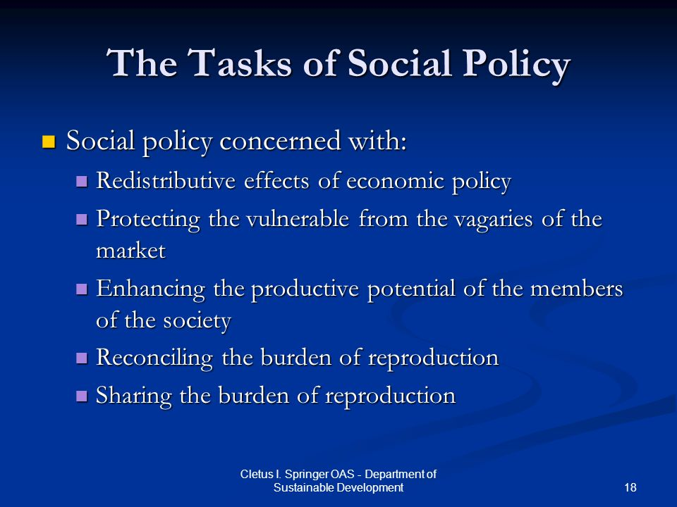 18 Cletus I. Springer OAS - Department of Sustainable Development The Tasks of Social Policy Social policy concerned with: Social policy concerned wit