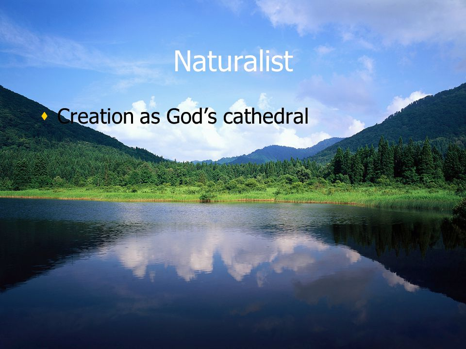 Naturalist Creation as Gods cathedral