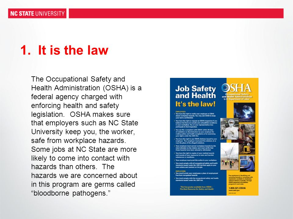 1. It is the law The Occupational Safety and Health Administration (OSHA) is a federal agency charged with enforcing health and safety legislation. OS