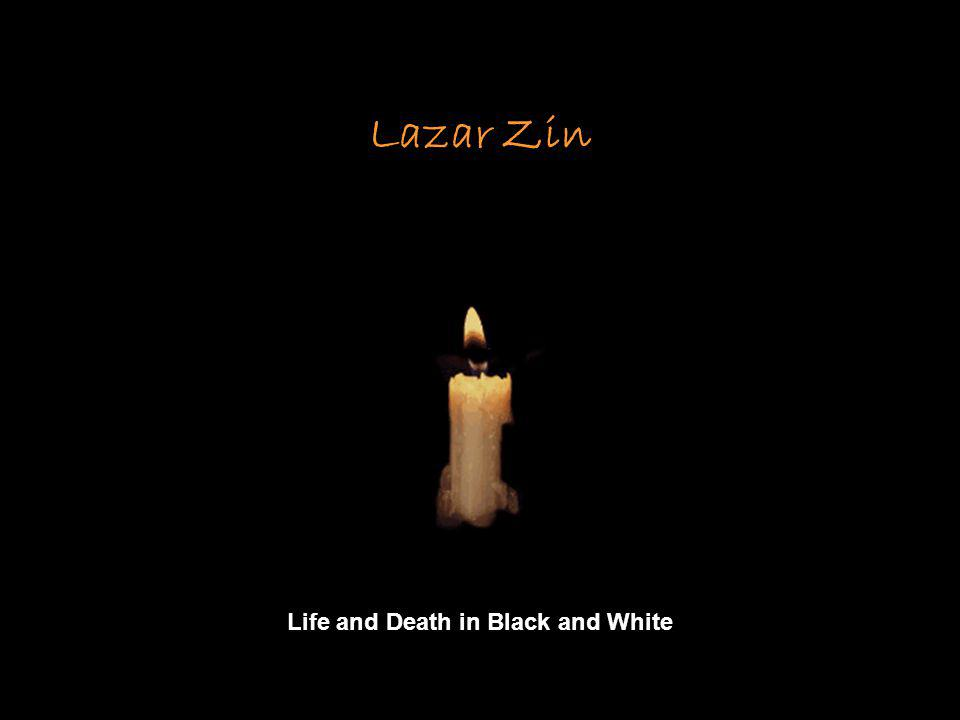 Lazar Zin Life and Death in Black and White