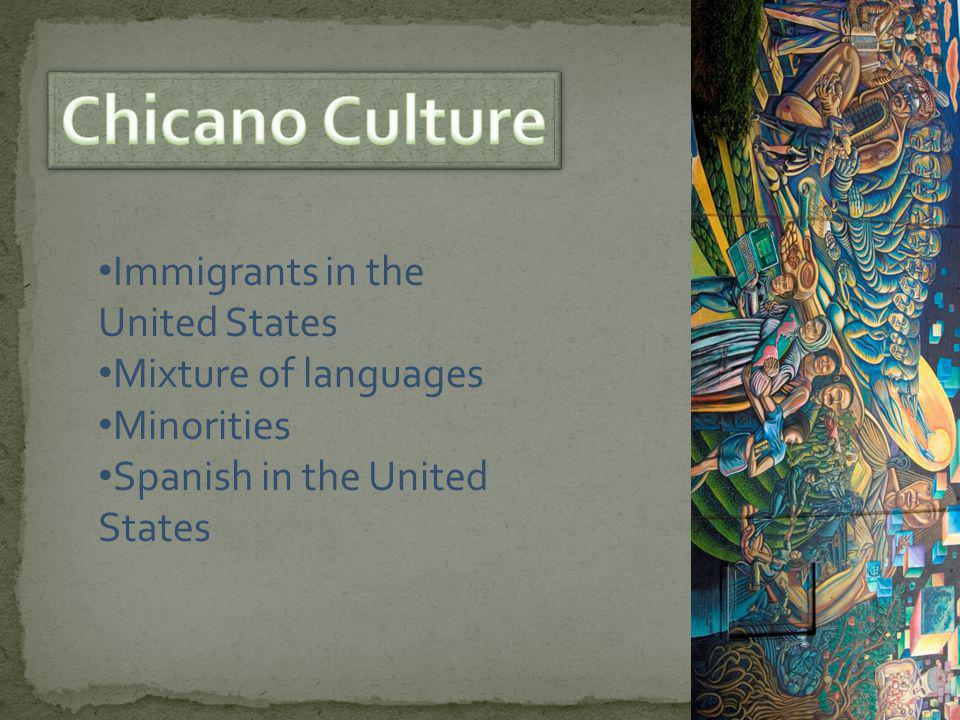 Immigrants in the United States Mixture of languages Minorities Spanish in the United States