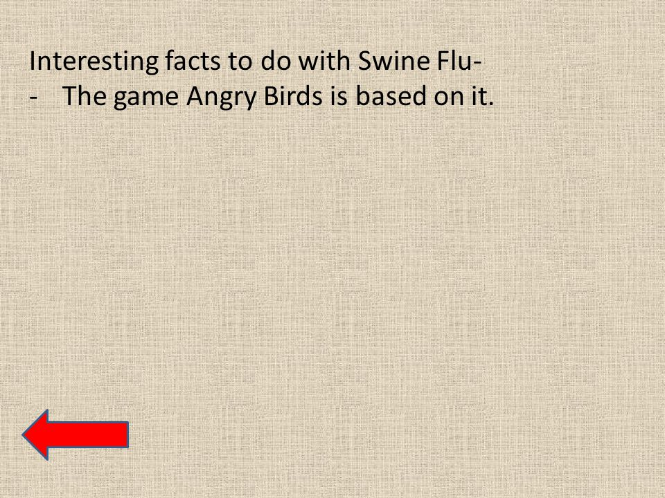 Interesting facts to do with Swine Flu- -The game Angry Birds is based on it.
