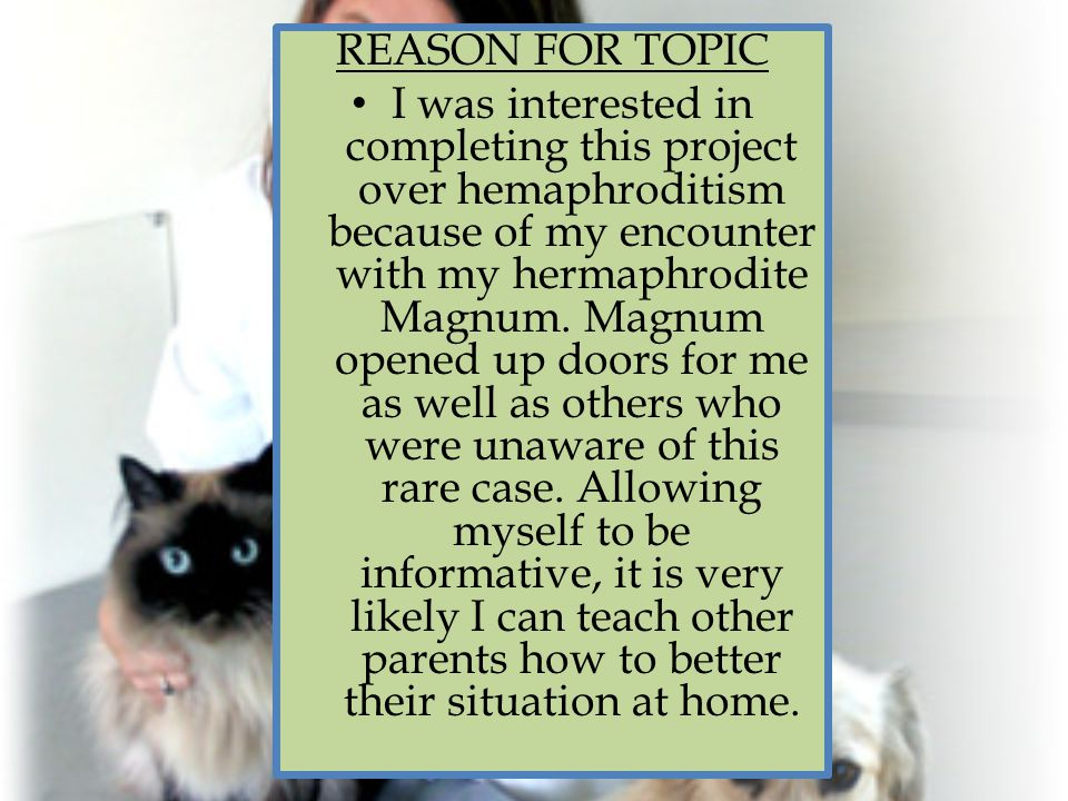 REASON FOR TOPIC I was interested in completing this project over hemaphroditism because of my encounter with my hermaphrodite Magnum.